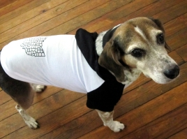 'Counties', in Black on Black and White Dog Hoodie, XXL