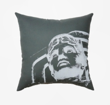 'Guardian' on Grey Pillow