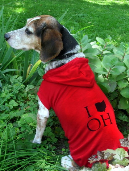 'I (Ohio) OH', in Black on Red Dog Hoodie, XXL