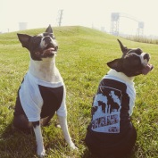 'Smokestacks' on Black and White Doggie Baseball Tee (BOTH)