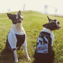 'Smokestacks' on Black and White Doggie Baseball Tee (BOTH)