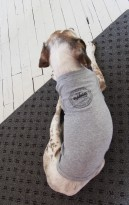 'City Seal' in Shimmer Black on Heather Grey Dog Tee (Installed)