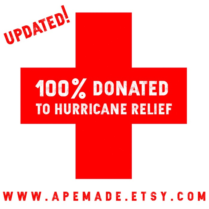 Hurricane Donation Promo Updated